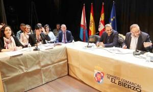 pleno consejo comarcal del Bierzo /